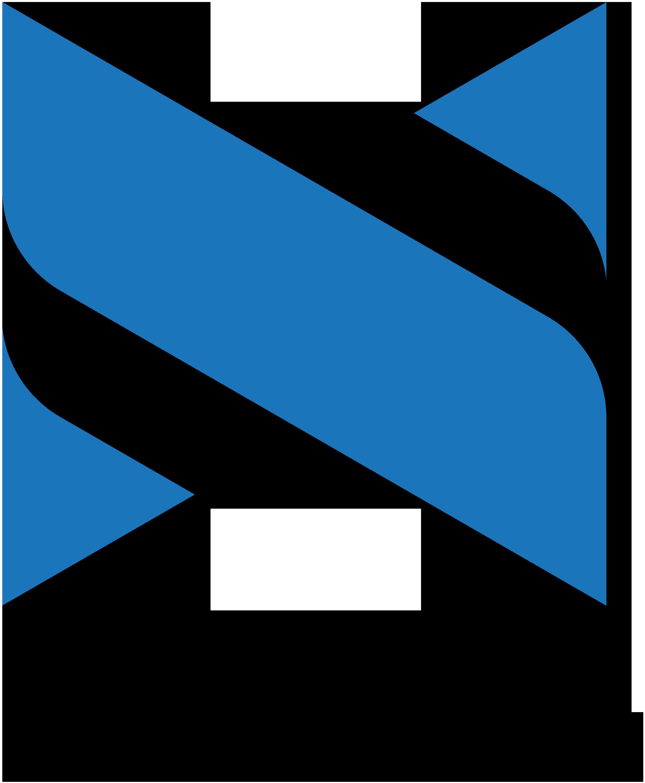 Netsol logo